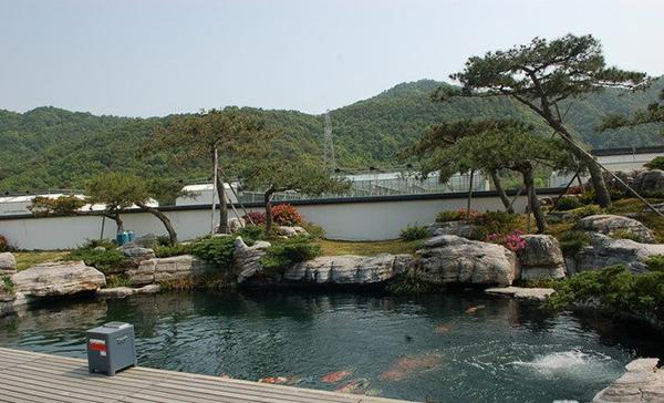 庭院假山鱼池设计图片欣赏 - 蓝天景观设计官网图片